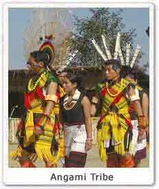 9411c56606 Angami, Angami tribe on North East India, Culture of Angami Tribe ...