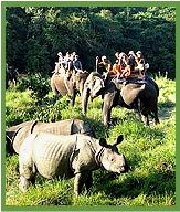 Elephant Safari,  Royal Chitwan National Park