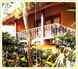 Taj Garden Retreat In Periyar Taj Jungle Resort In