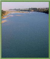 tapi-river.jpg